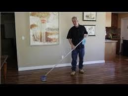 Dog Urine Wood Floors Vinegar by Hardwood Floors How Do I Clean Pet Urine Stains Out Of Hardwood