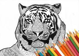 Tiger Coloring Page Animal Zentangle Marker Download Print Design Instant Draw