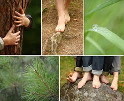 pied de le blanc sentier pieds nus du lac blanc orbey alsace