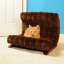 Cat Beds Petco by 44 Best Fall Dog Beds Images On Pinterest Dog Furniture Dogs