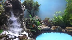 Aquascape Waterfall Tanjungpinang Part 2 - YouTube Aquascape Waterfall Tjupinang Part 2 Youtube Modern Aquarium Design With Style For New Interior Aquascape Low Cost My Waterfall Nhaquascape Pro Pondwater Feature Pumpschester Rockingham Diy Pondless Waterfallsbackyard Landscape Ideasmonmouth Nj Aqualand Nighttime Winter By Inc Photo Projectswarwickorange Countynynorthern Its Called Strenght Of A Thousand Stone Backyard Waterfalllow Maintenance Water Just Add And Patio Amazoncom Kit 3 W Free Led 3light