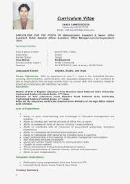 Sample Resume Youth Director Valid Youth Pastor Resume Samples ... Pastor Resume Samples New Youth Ministry Best 31 Cool Sample Pastoral Rumes All About Public Administration Examples It Example Hvac Cover Letter Entry Level 7 And Template Design Ideas Creative Arts Valid Pastors 99 Great Xpastor Letters For Awesome Music Kenyafuntripcom 2312 Acmtycorg