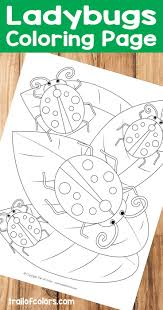 Free Printable Ladybugs Coloring Page