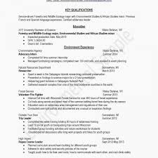 Np Sample Resume Sample Summary For Resume Magnificent Resume Sample Summary Fresh Cover Letter Sample For Retail With No Experience