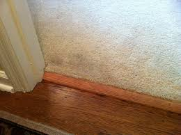 Carpet To Tile Transition Strips Uk by Transition Strips From Hardwood To Carpet Carpet Vidalondon