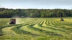 100 Sweden Houses For Sale Agriculture In Wikipedia