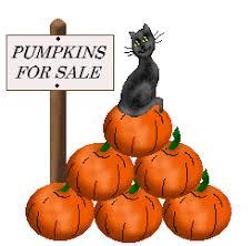 Auburn Pumpkin Patch by 100 Auburn Pumpkin Patch Pumpkin Nights 38 Photos U0026 42