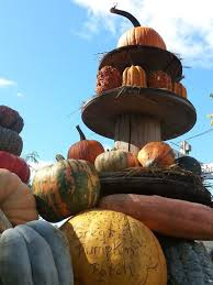 Pumpkin Patch Homer Glen Il by Don U0027t Miss These 10 Great Pumpkin Patches In Illinois