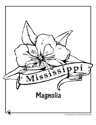 Mississippi State Flower Coloring Page