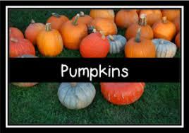 Pumpkin Festival Ohio by Lehner U0027s Pumpkin Farm
