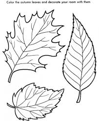 Autumn Leaves Coloring Pages Picture 3 550x672