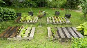 Back In April I Wrote An Entry That Included A Segment On Plans For Creating Pallet Garden Am Strong Believer Growing Food NOT Lawns
