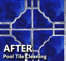 pool tile cleaning gilbert az calcium removal