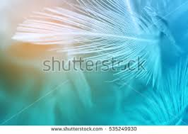 Turquoise Stock Images Royalty Free Images Vectors