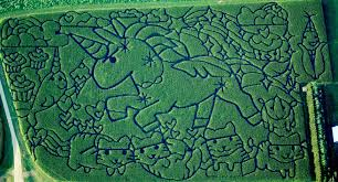 Petaluma Pumpkin Patch Corn Maze Map by Best 25 Haunted Corn Maze Ideas On Pinterest Corn Maze Best Kid
