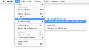 Top 2 Ways to Transfer iBooks from iPhone iPad to PC Mac