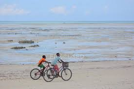 Boys Riding Bikes On The Beach Zanzibar Stock Photo