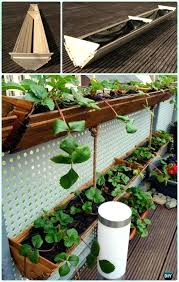 Strawberry Bed Ideas Pallet Used As Strawberries Garden