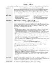Fair Insurance Job Resume Samples With Processor