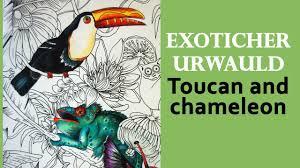 Coloriage Coloriage Toucan Pour Adultes Coloriage Toucan