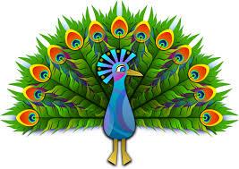 Cartoon Peacock Clipart 1