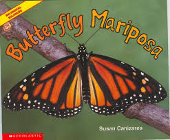 Butterfly Mariposa Susan Canizares 9780439562409 Amazon Books
