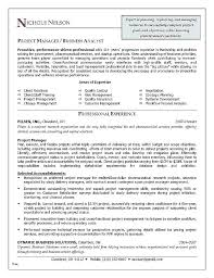 Project Manager Example Resume Junior Sample Doc Fresh Samples