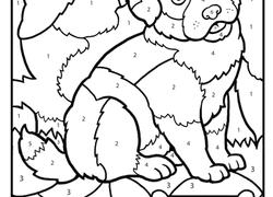 Kindergarten Worksheet Color By Number Puppy