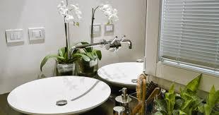 einrichtungstipps fürs badezimmer welche pflanzen passen