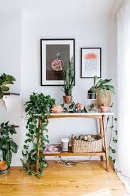 plants and a mid century touch in the happy home of
