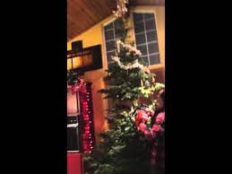Artificial Fraser Fir Christmas Trees Uk by When Should You Put Up Your Christmas Tree And Should You Go Real