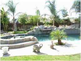 Backyards : Terrific Decorative Palm Trees For Tropical Landscape ... Front Yard Landscaping With Palm Trees Faba Amys Office Photo Page Hgtv Design Ideas Backyard Designs Wood Above Concrete Wall And Outdoor Garden Exciting Tropical Pools Small Green Grasses Maintenance Backyards Cozy Plant Of The Week Florida Cstruction Landscape Palm Trees In Landscape Bing Images Horticulturejardinage Tree Types And Pictures From Of Houston Planting Sylvester Date Our Red Ostelinda Southern California History Species Guide Install