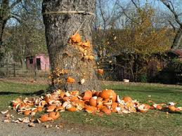Nh Pumpkin Festival Riot by Riots Break Out In Keene New Hampshire At Annual Pumpkin Festival