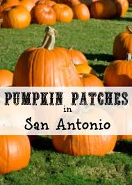 Pumpkin Patch Waco Tx 2015 by 20 Pumpkin Patch Houston Tx Halloween In Houston A List Of