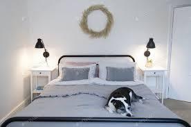 ein hund schläft auf einem bett in einem hellen und hellen schlafzimmer foto twenty20photos auf envato elements