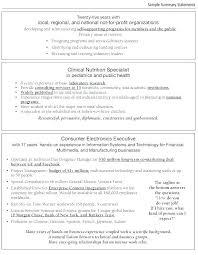 Executive Profile Resume Account Template Summary Example Free Responsibilities