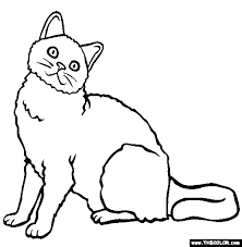 Selkirk Rex Breed Cat Online Coloring Page