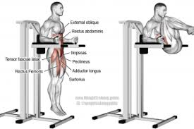 Hanging Leg Raisescaptains Chair Abs by Iliopsoas Archives Weight Training Guide