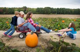 Pumpkin Patch Columbus Wi by Create Fun Fall Memories 16 Ways To Enjoy Autumn With Your Family