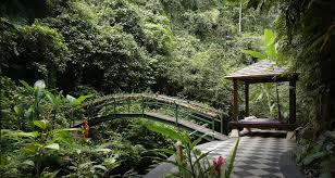100 Hanging Garden Resort Bali The S Of Indonesia Caxton Manor