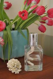 Lampe Berger Fragrance Ingredients by Clean The Air In Your Home And Make It Smell Good La Vie Quotidienne