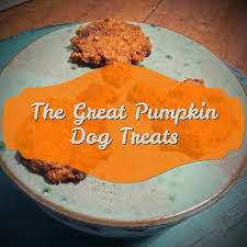 Libby Canned Pumpkin For Dogs by The Grand Chahee Dot Com The Great Pumpkin Dog Treats U0026 Cookies