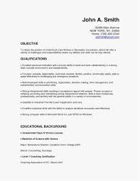 Entry Level Information Technology Resume Templates Luxury Graphic Design Skills Pdf Format For