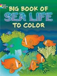 Big Book Of Sea Life To Color By Ruth Soffer Anthony DAttilio