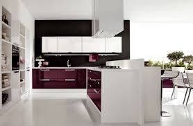 Ideas Ritzy Purple And White Modern Kitchen Themes With Floating Cabinetry As Well