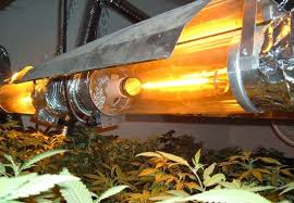 high intensity discharge hid grow lights