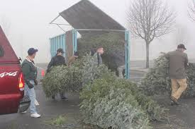 Boy Scout Christmas Tree Recycling San Diego by Christmas Tree Round Up At City Of Lacey Washington Government