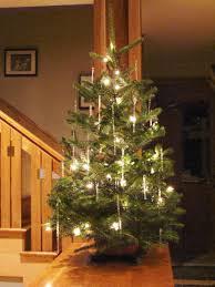 Small Tabletop Fiber Optic Christmas Tree by Tabletop Christmas Trees U2013 Happy Holidays