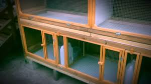 100 Pigeon Coop Plans Small Loft By Flippingthebirds