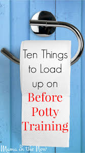Elmo Adventure Potty Chair Canada by Best 25 Potty Training Boys Ideas On Pinterest Tips For Potty